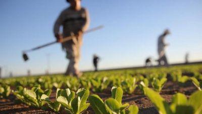 Αγρότες: Η καταβολή των 363 εκ. ευρώ, η αναμονή για τα 500 εκ. ευρώ της βασικής ενίσχυσης και τα 800 συνολικά