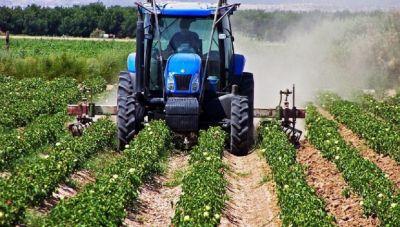 Ως και 540 ευρώ ανά στρέμμα - Οι κατηγορίες των αγροτών και τα ποσά ανά είδος προϊόντος.