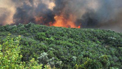 Δήμος Πλατανιά: Ενημέρωση για τα μέτρα πρόληψης των πυρκαγιών