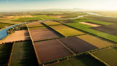 Το ΥΠΑΑΤ παραχωρεί δωρεάν χωράφια στην Ηπειρο
