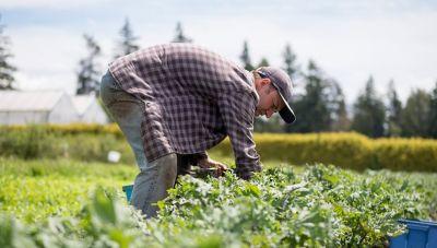 Μετακινήσεις αγροτών: Αυτά είναι τα 3 χαρτιά που πρέπει να εχετε στο χωράφι!