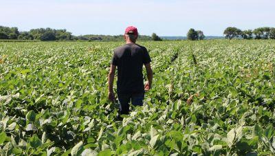 Νομοσχέδιο για τους αγρότες για πληρωμές «εξπρές» και ενίσχυση του εισοδήματος