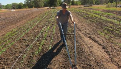 Αγρότες: Αυτή είναι η εγκύκλιος που φέρνει ριζικές αλλαγές στους ελέγχους για επιδοτήσεις και ενισχύσεις!