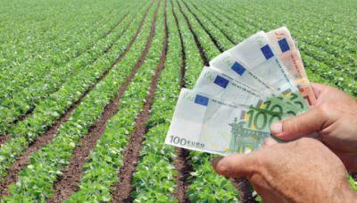 Οι αγρότες βλέπουν το «χρώμα του χρήματος»: Αποζημιώσεις 31,6 εκατ. ευρώ καταβάλλει ο ΕΛΓΑ