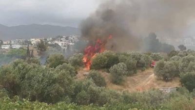 Οριοθετήθηκε η φωτιά στην Παλλήνη Αττικής