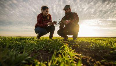 To ΥΠΑΑΤ δίνει 80 εκ. ευρώ για να ενισχύσει τους αγρότες - Στηρίζει το Σύστημα Παροχής Συμβουλών