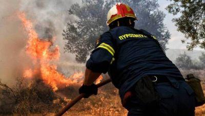Στάχτη και αποκαϊδια: Κάηκαν 650 στρέμματα γης από την πυρκαγιά στο Αμμούδι