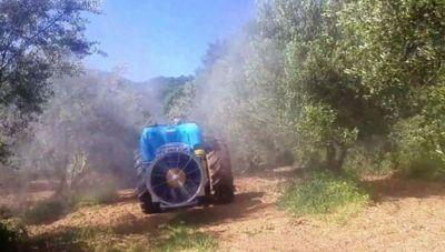 Πένθος στην Κρήτη για το νεκρό αγρότη: Σκοτώθηκε από το τρακτέρ ενώ ψέκαζε για το δάκο