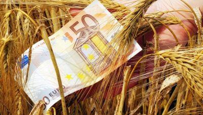 Πότε θα γίνει η πληρωμή: Στην αναμονή χιλιάδες αγρότες για τα υπόλοιπα Βασικής Ενίσχυσης και «πρασινίσματος»