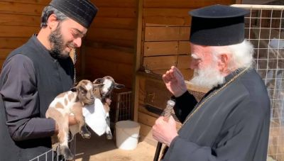 Θέμα newshub.gr: Η Κιβωτός Προστασίας των Ζώων στη Μονή Αγίου Παντελεήμονα Φόδελε (φωτογραφίες)