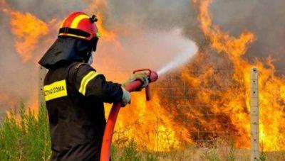 Φωτιά στην Κάρπαθο: Υπό έλεγχο η κατάσταση - Στο σημείο 16 «Κρητικοί» πυροσβέστες