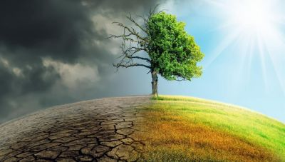 Κλιματική αλλαγή: Τα 2/3 των τροπικών δασών του κόσμου έχουν καταστραφεί ή υποβαθμισθεί