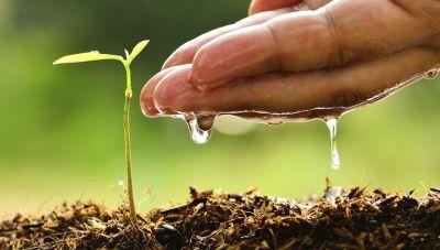 Πρόγραμμα Νέων Αγροτών: Ερχεται η προκήρυξη μέσα στο Νοέμβριο