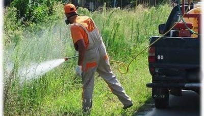 Το αναλυτικό πρόγραμμα καταπολέμησης κουνουπιών στα Χανιά