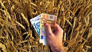 Μοίρασε 7 εκ. ευρώ ο ΕΛΓΑ - Πόσα πήραν οι αγρότες σε Ηράκλειο, Ρέθυμνο, Χανιά και Λασίθι