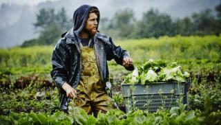 Κρήτη: Ως και 70.000 ευρώ σε κάθε αγρότη - Συζήτηση για να ανοίξει η «ψαλίδα» των αποζημιώσεων