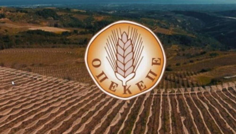 ΟΠΕΚΕΠΕ: Νέα πληρωμή 8,6 εκατ. ευρώ σε 6.376 δικαιούχους