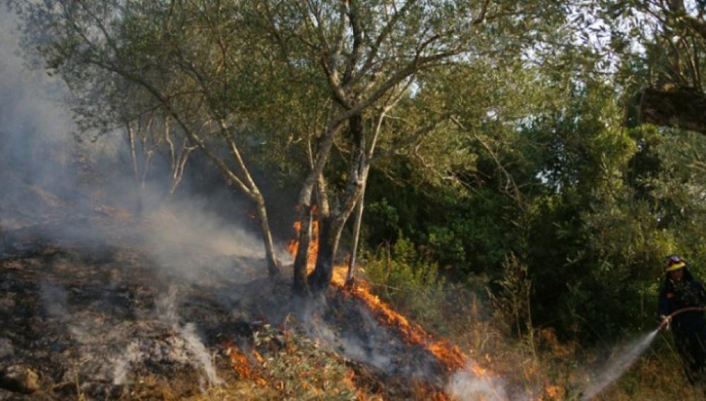 Σε ύφεση η πυρκαγιά στην Χίο