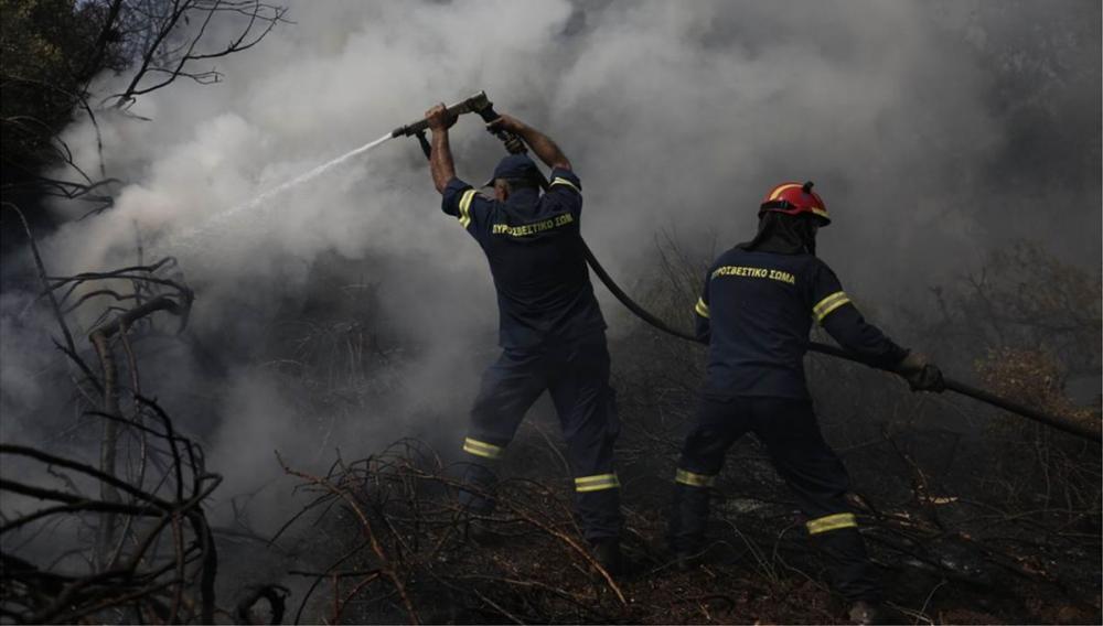 «Μάχη» με τις φλόγες στο Μαλεβιζι (φωτογραφίες)