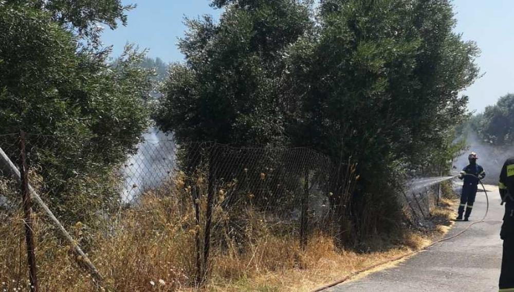 Συναγερμός για πυρκαγιά στην Κνωσό! (φωτογραφίες)