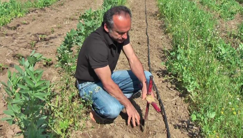 Θέμα newshub.gr: Έρχονται 12 εκ. ευρώ για αγροτικές επιχειρήσεις σε Ηράκλειο και Μεσαρά!