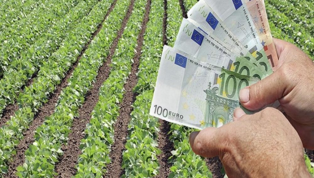 Δείτε ποιοι είναι οι δικαιούχοι του επιδόματος των 600 ευρώ του ΟΠΕΚΑ