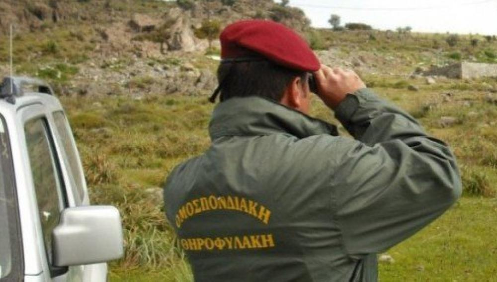 Κρητη: Συνελήφθησαν για λαθραίο κυνήγι