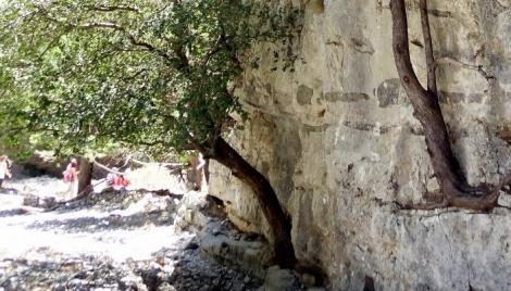 Κρήτη: Σε ένα εντυπωσιακό φαράγγι...
