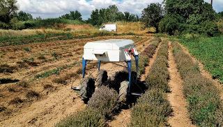 Ένα ρομπότ- αγρότης για τα χωράφια!