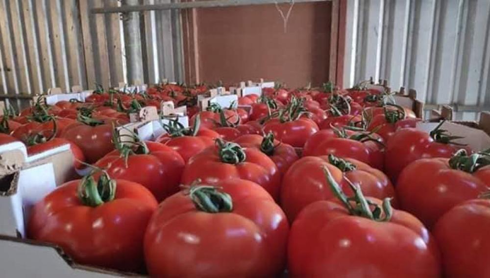 Κρητική σαλάτα με ντομάτες... Τουρκίας
