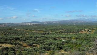 Αεροδρομιο Καστελίου: Ζητούμενο η αναβάθμιση κατοικιών και επιχειρήσεων