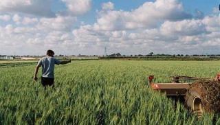 Ο.Π.Ε.Κ.Ε.Π.Ε: Ξεκινούν οι πληρωμές 16.5 εκ. ευρώ για χιλιάδες αγρότες