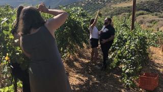Αποκλειστικό: Θέλει να φτάσει το κρητικό κρασί στα πέρατα του κόσμου! (φωτογραφίες)