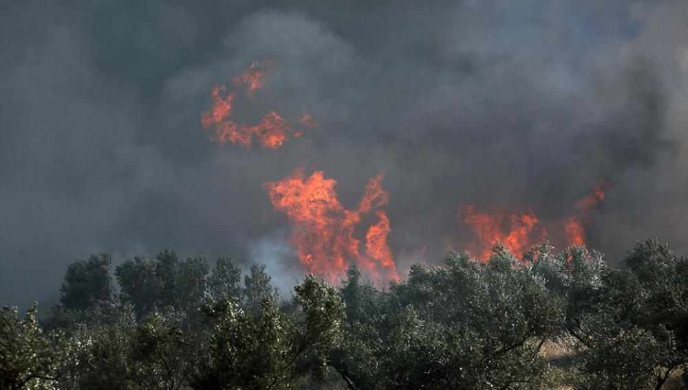 Σε πλήρη εξέλιξη η πυρκαγιά στα Καλύβια – Εκκενώθηκαν οικισμοί